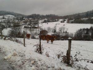 dome-loisirs-hiver-balades-quad